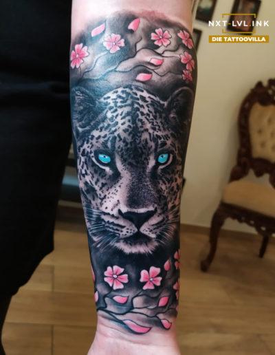 Claudiu - Leopard